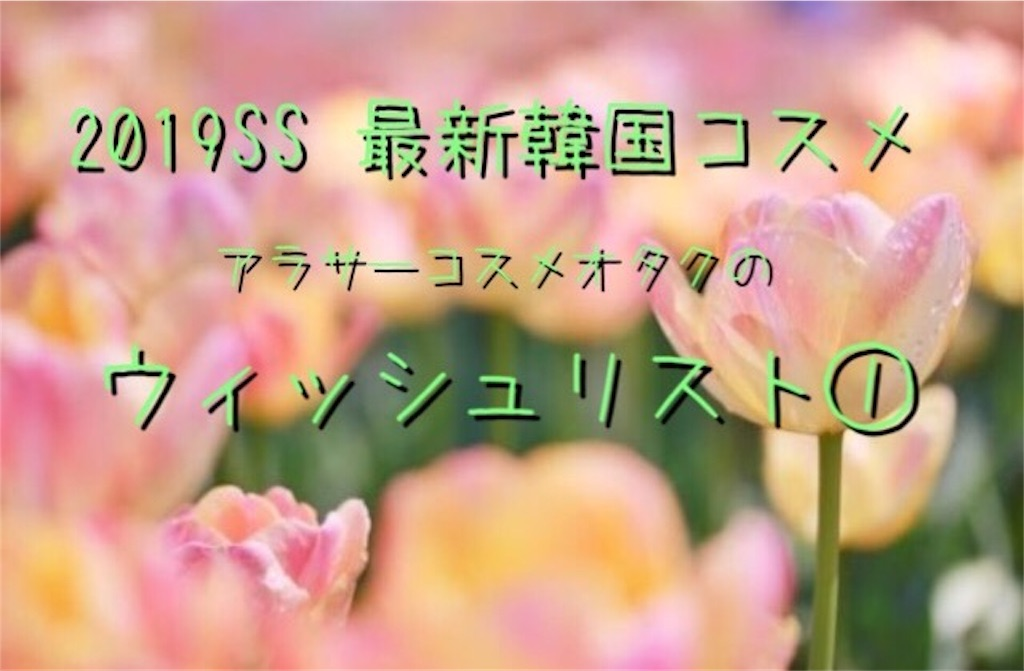 f:id:usayoshi:20190227192548j:image