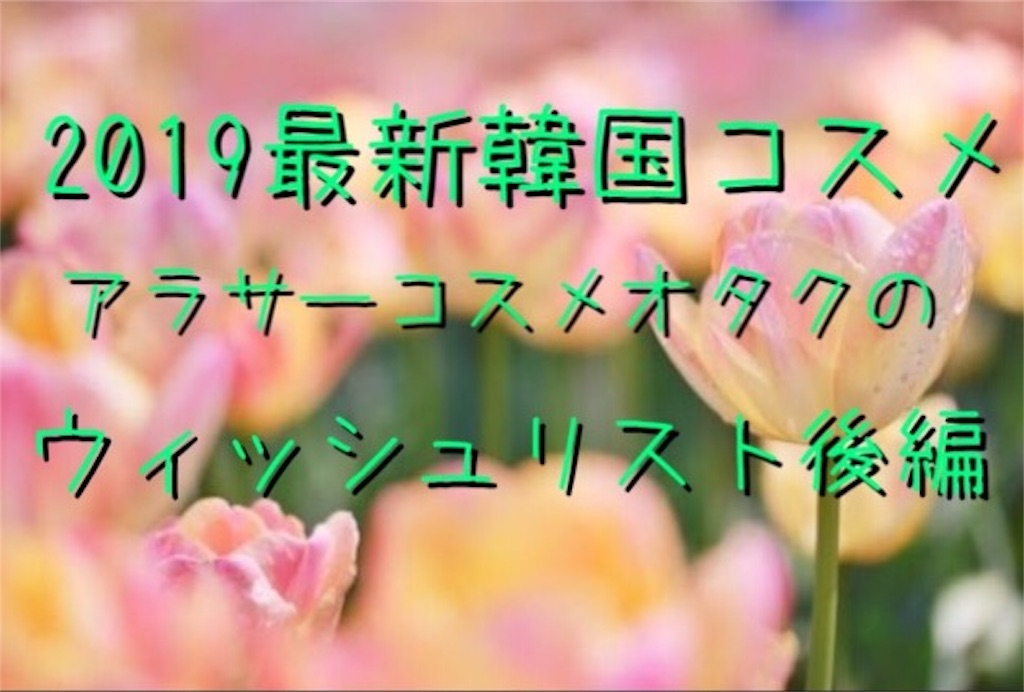 f:id:usayoshi:20190301214459j:plain