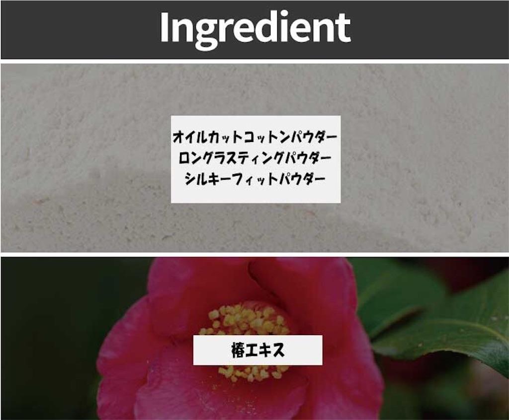 f:id:usayoshi:20190311085113j:plain