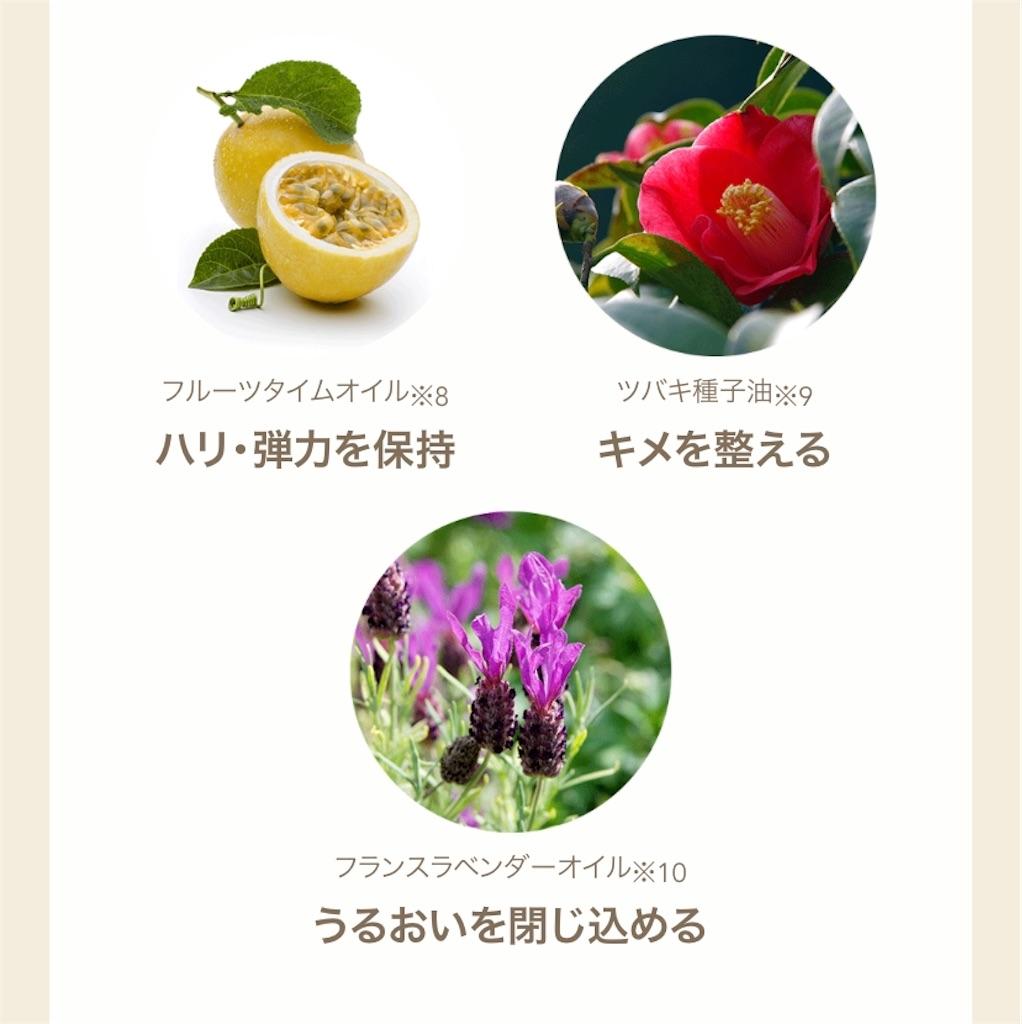 f:id:usayoshi:20200928200123j:image