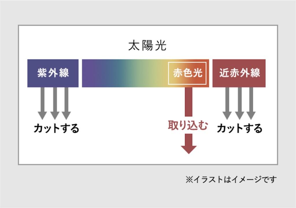 f:id:usayoshi:20210502134724j:plain