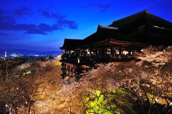 清水寺は京都の桜の定番お花見スポットの名所