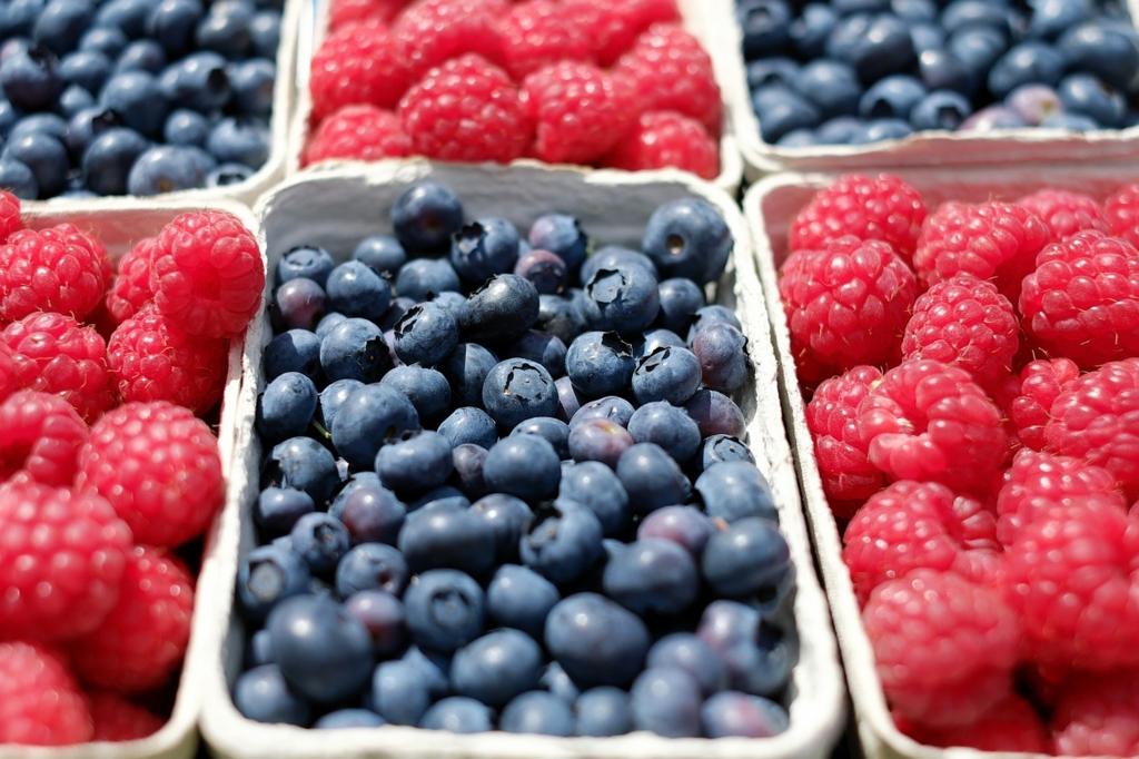 ベリー系のフルーツは代謝をアップさせるダイエット中におすすめの食べ物