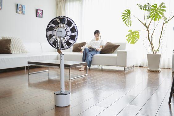 高級扇風機と安い扇風機の本当の違い