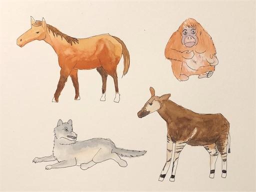絵の練習 動物イラスト ウマからオカピ なぜ3日坊主になりがちなのかな