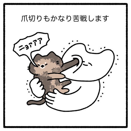 JCYI4608