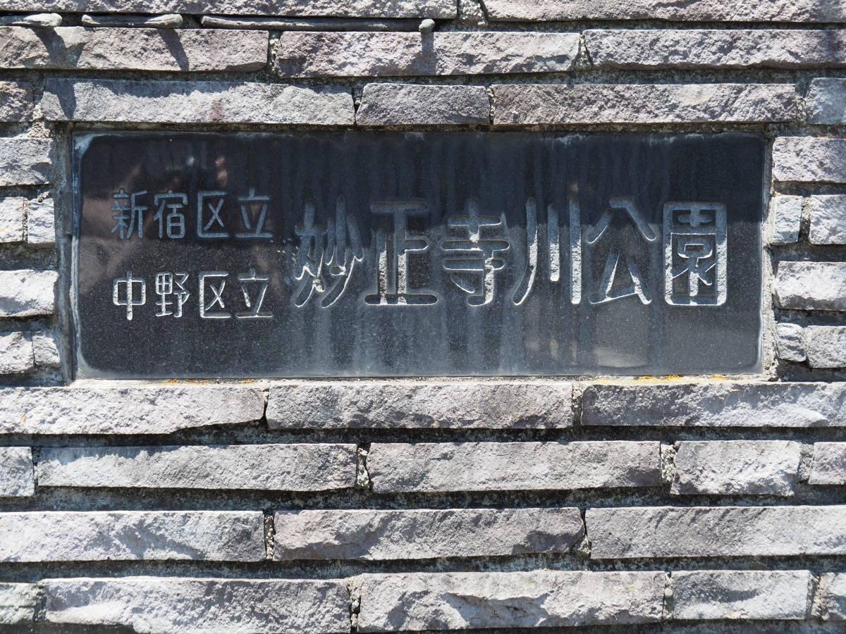 f:id:ushi-pei:20200517114811j:plain