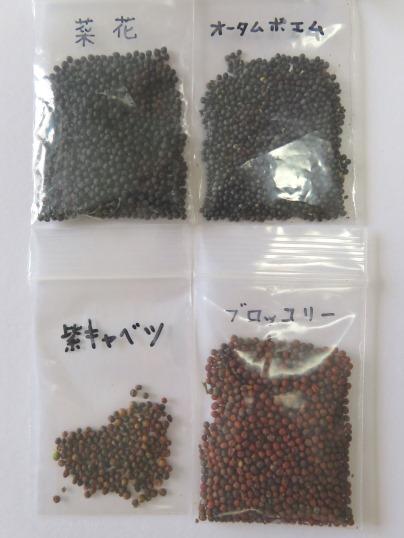 f:id:ushidama:20180706061559j:plain