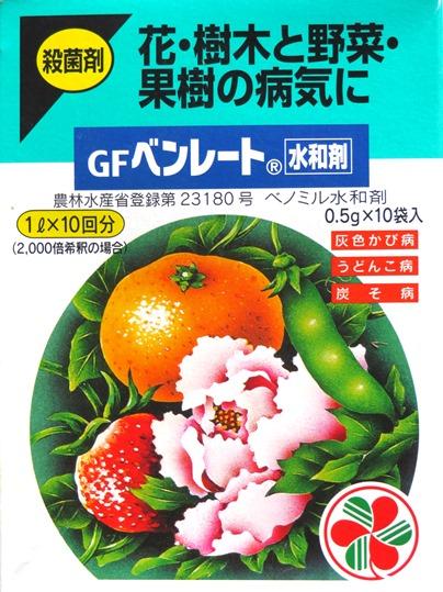 f:id:ushidama:20190722114138j:plain