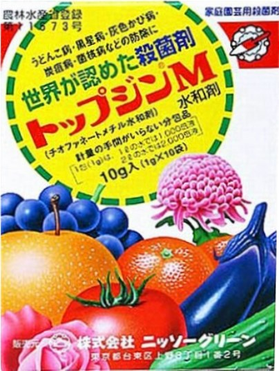 f:id:ushidama:20190722114258j:plain