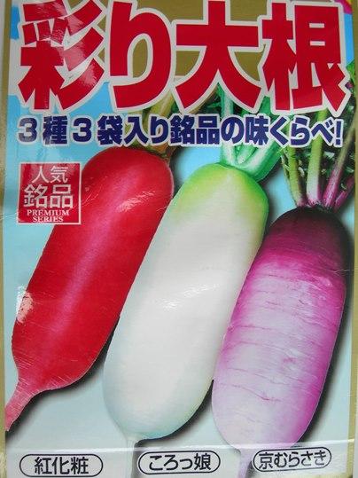 f:id:ushidama:20191009061842j:plain