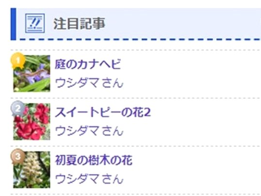 f:id:ushidama:20200509132638j:plain
