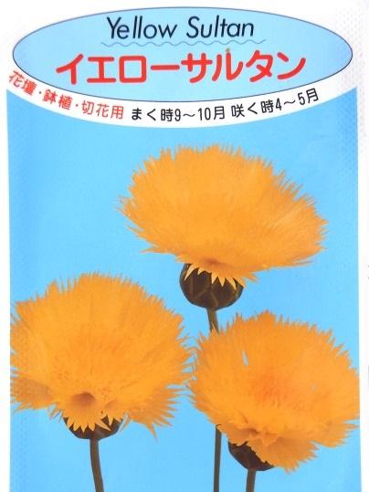f:id:ushidama:20200904074947j:plain