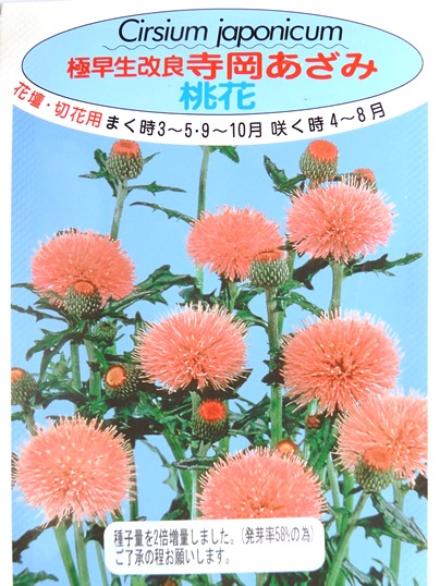 f:id:ushidama:20200904075035j:plain