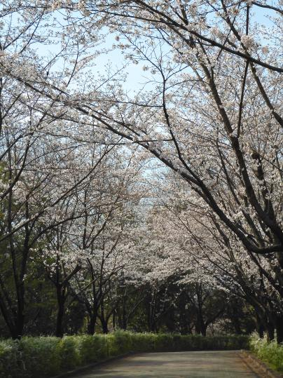 f:id:ushidama:20210326183204j:plain