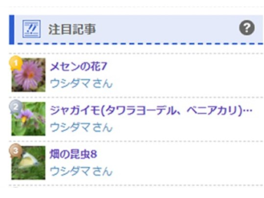 f:id:ushidama:20210612100453j:plain