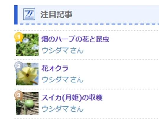 f:id:ushidama:20210723132024j:plain
