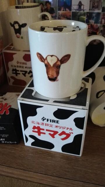 f:id:ushigoya:20161024075538j:image