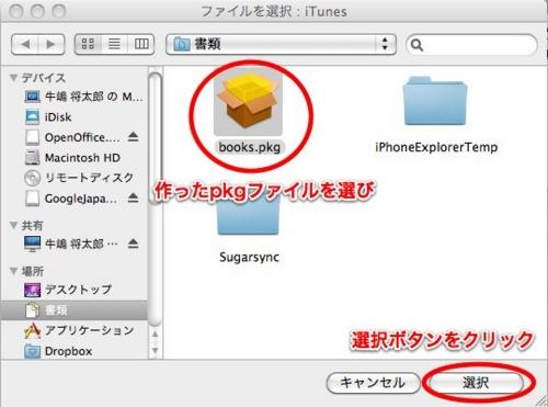 f:id:ushigyu:20101231182237j:image
