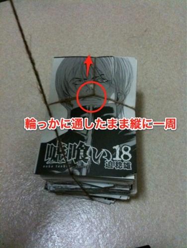 f:id:ushigyu:20110111014256j:image