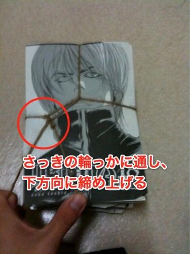 f:id:ushigyu:20110111014257j:image