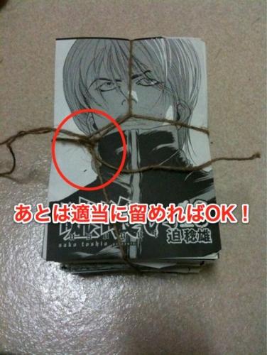 f:id:ushigyu:20110111014258j:image