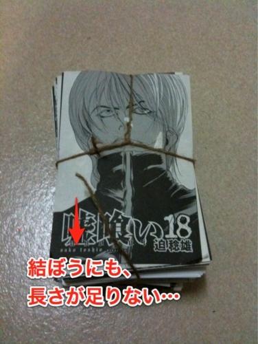 f:id:ushigyu:20110111022651j:image