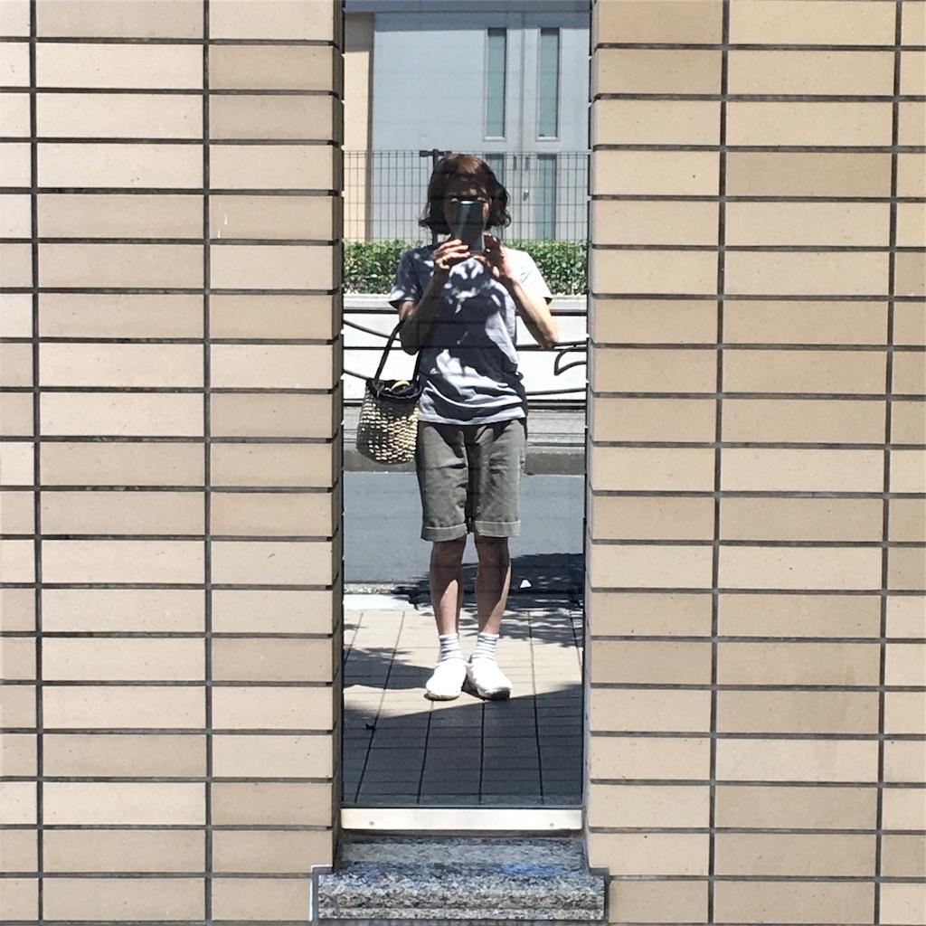 f:id:ushiko_imasarado:20190526100328j:image