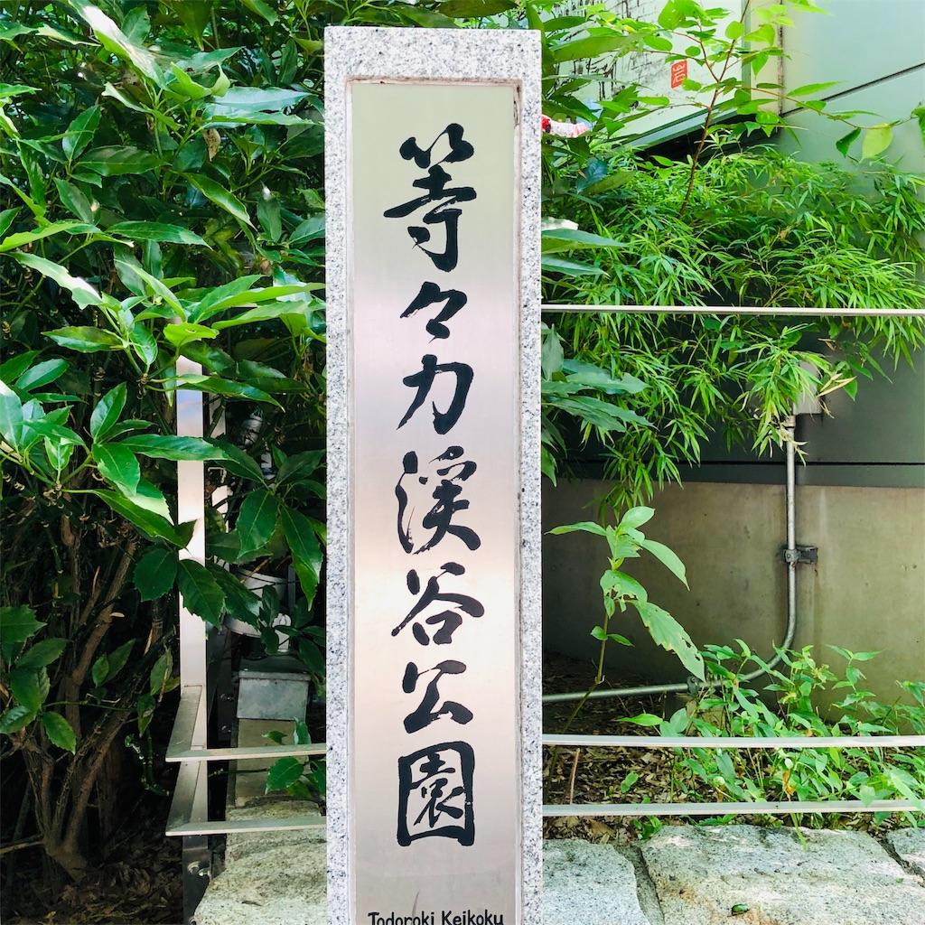 f:id:ushiko_imasarado:20190805083728j:image