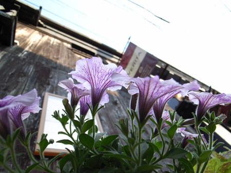 f:id:ushinabe1980:20061105151019j:image