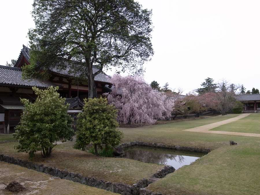 f:id:ushinabe1980:20110417153709j:image:w450