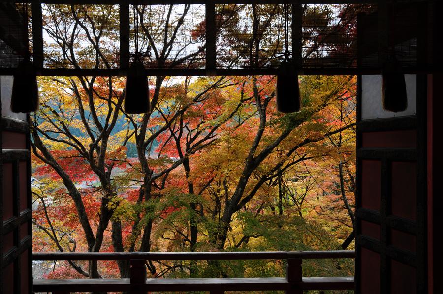 f:id:ushinabe1980:20111129104956j:image:w450