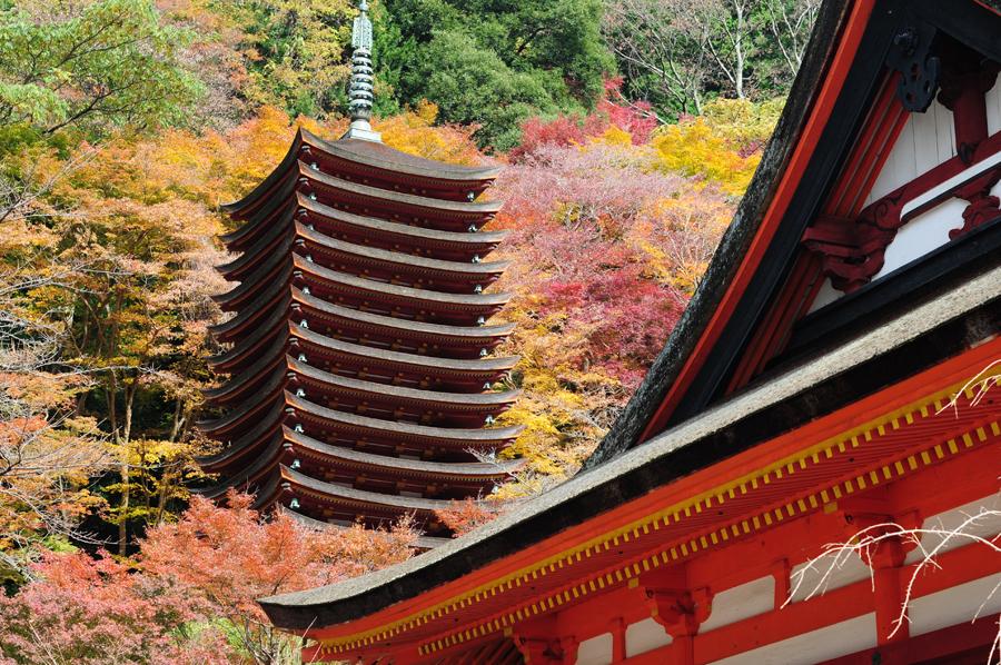 f:id:ushinabe1980:20111129111406j:image:w450