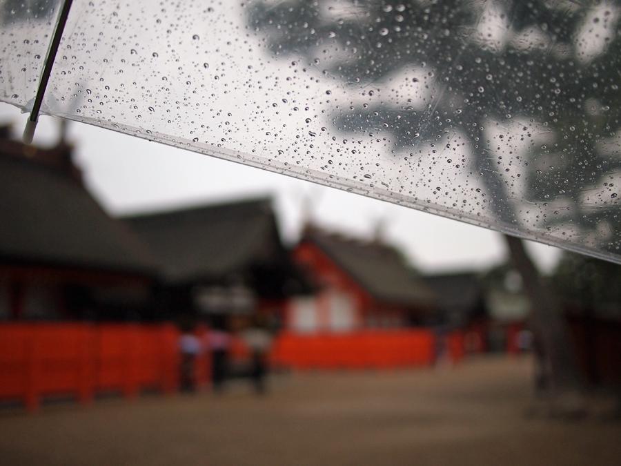 f:id:ushinabe1980:20120119120200j:image:w220