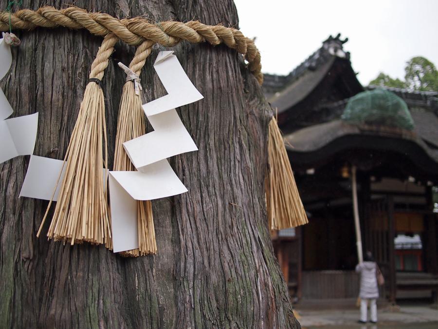 f:id:ushinabe1980:20120119120636j:image:w220