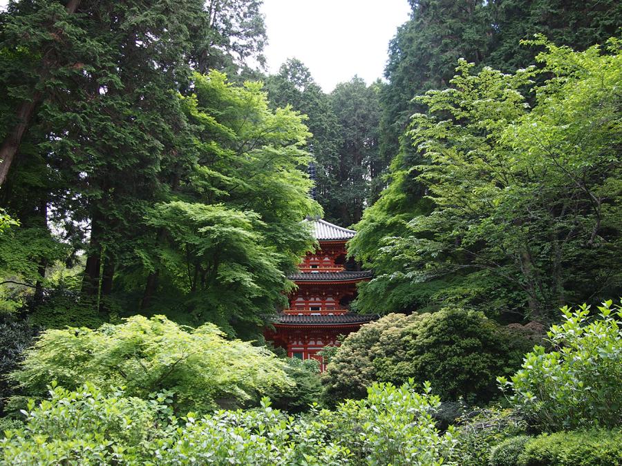 f:id:ushinabe1980:20120511135732j:image:w450
