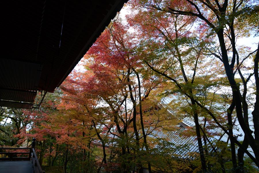f:id:ushinabe1980:20121116124546j:image:w450