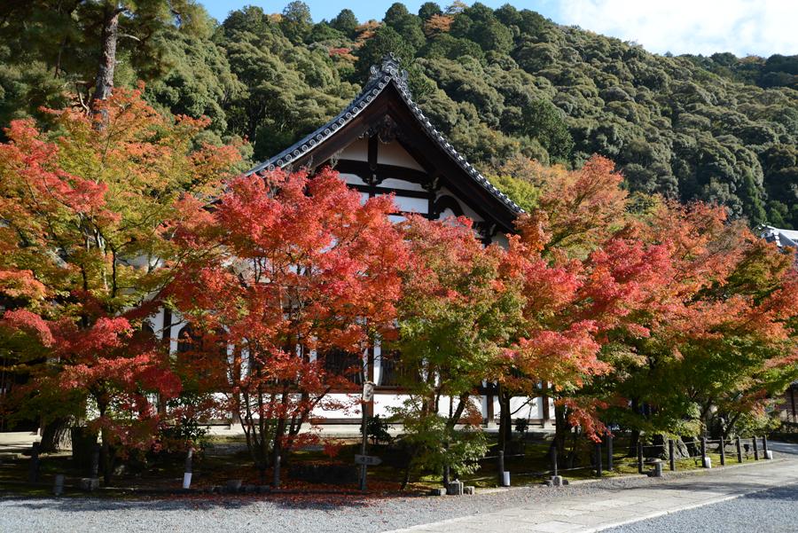 f:id:ushinabe1980:20121116130711j:image:w450