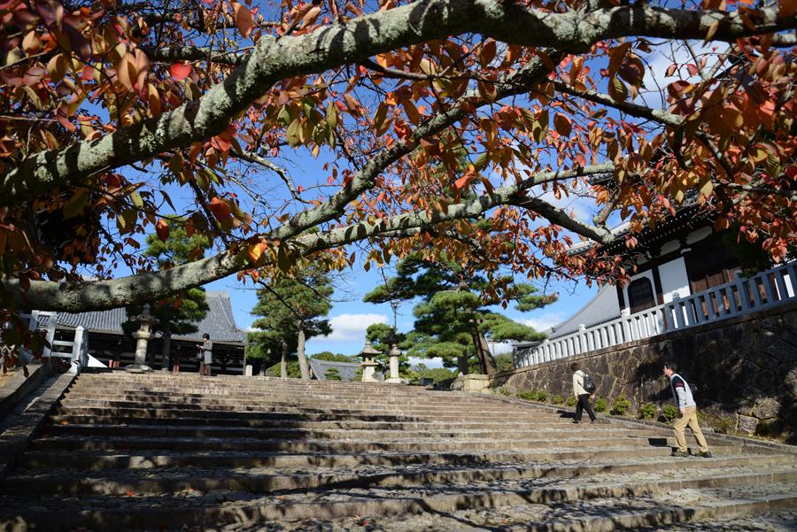 f:id:ushinabe1980:20121116140627j:image:w450