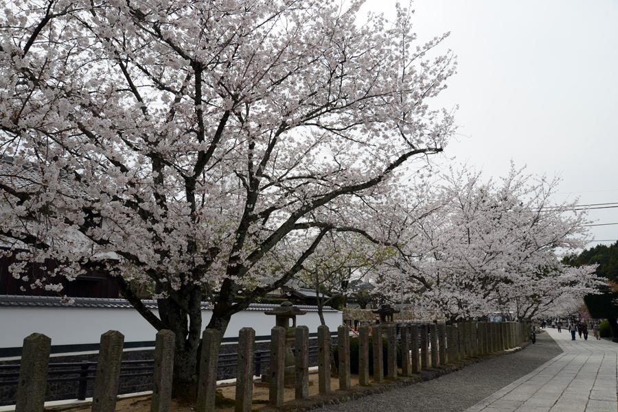 f:id:ushinabe1980:20130329132649j:image:w450