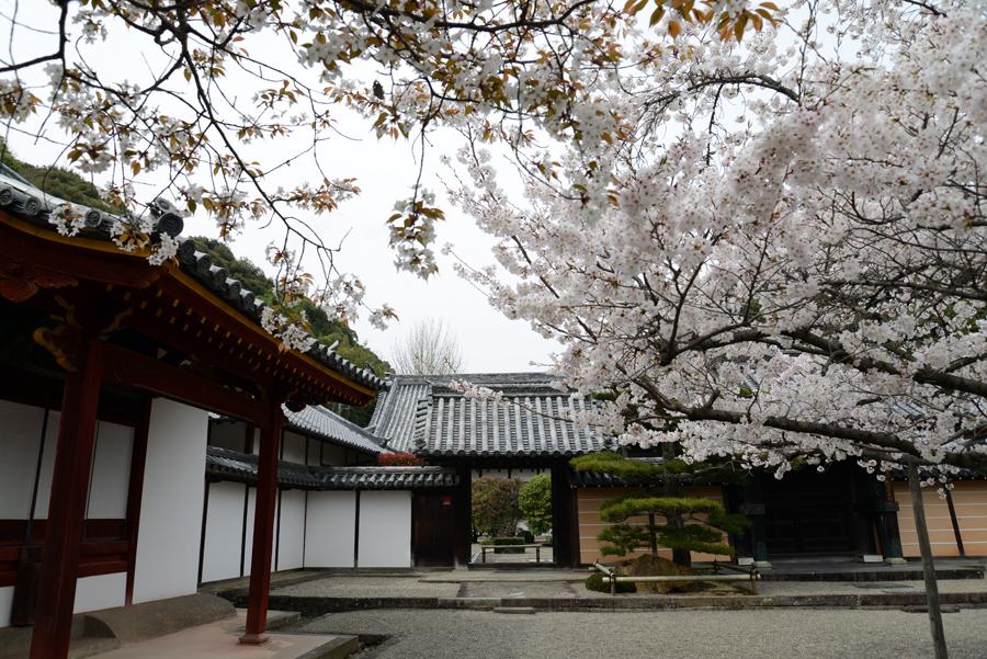 f:id:ushinabe1980:20130329132943j:image:w450