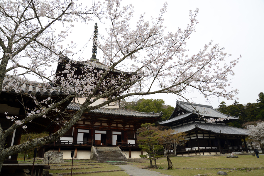 f:id:ushinabe1980:20130329141240j:image:w450
