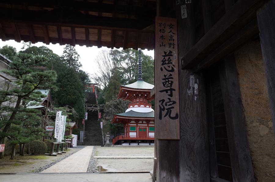 f:id:ushinabe1980:20140321140812j:image:w220
