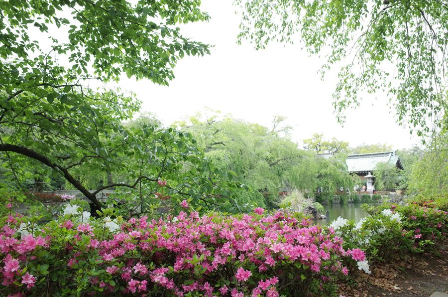 f:id:ushinabe1980:20140503130101j:image:w450