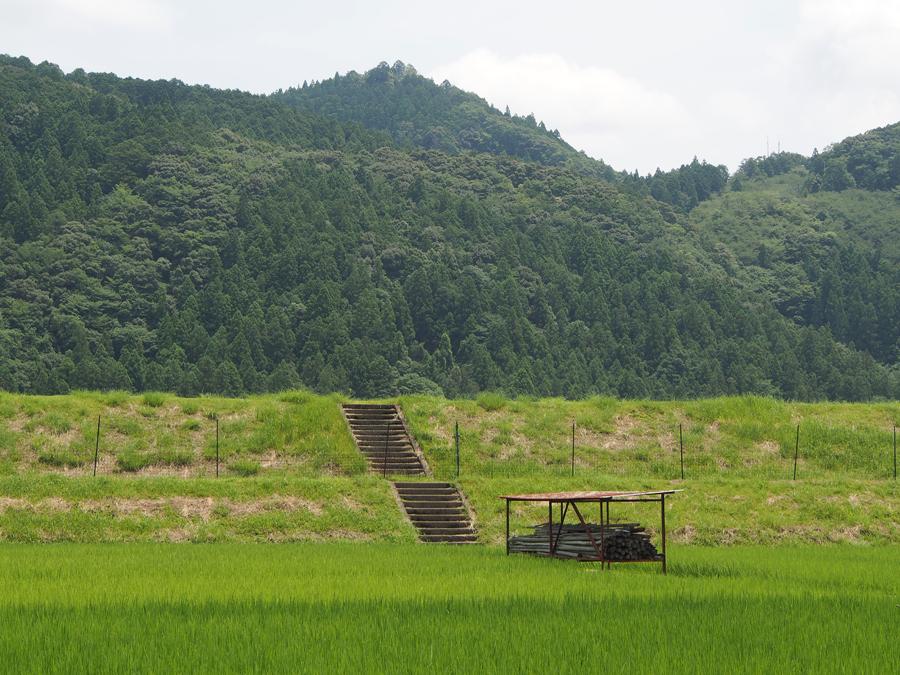 f:id:ushinabe1980:20140721114722j:image:w450