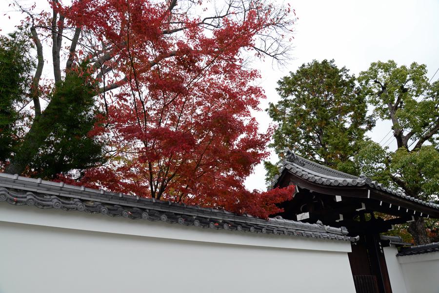 f:id:ushinabe1980:20141117114403j:image:w450