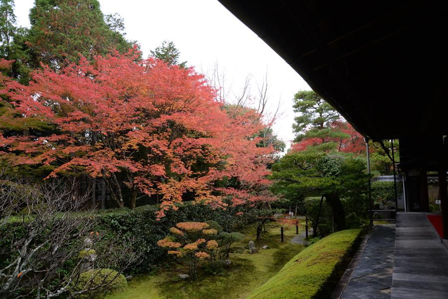 f:id:ushinabe1980:20141117115305j:image:w450