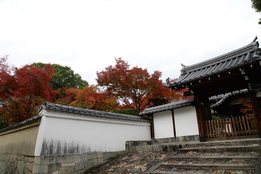 f:id:ushinabe1980:20141117123145j:image:w450