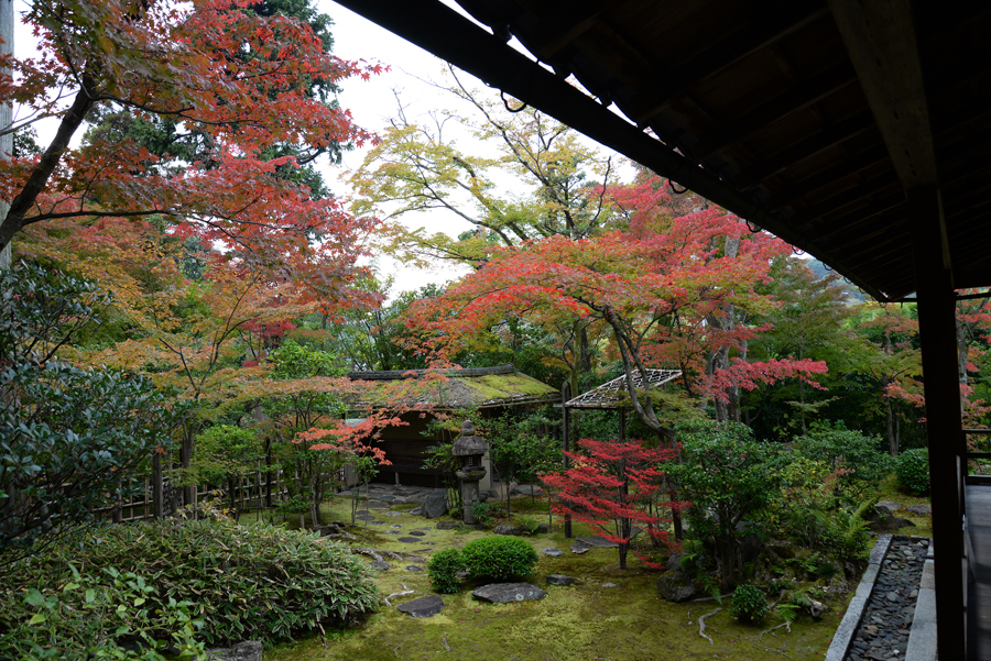 f:id:ushinabe1980:20141117123557j:image:w450