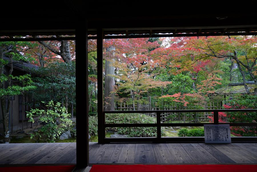f:id:ushinabe1980:20141117124843j:image:w450